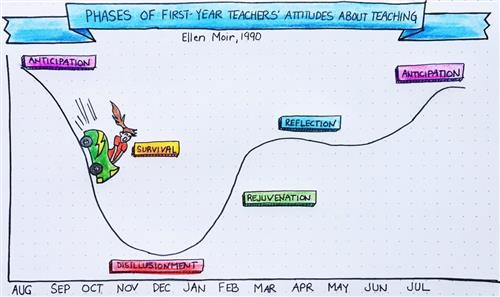 Phases of 1st Year Teaching