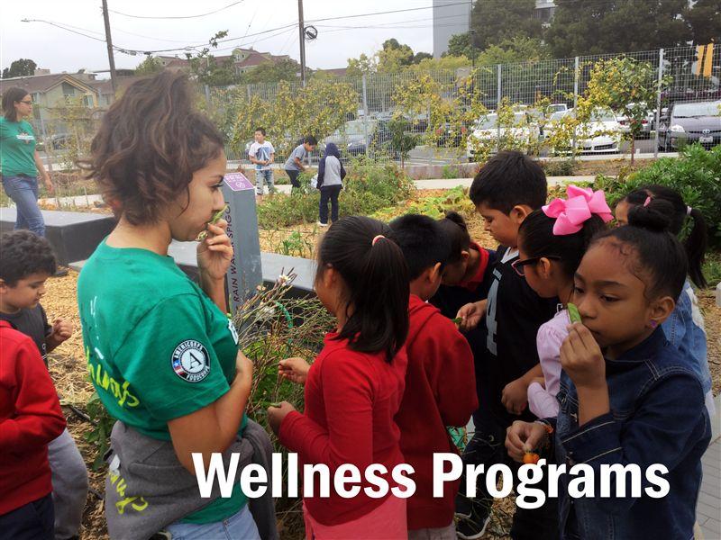 School Wellness / Welcome