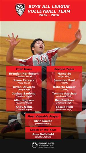 All League Boys Volleyball Team 2015-16