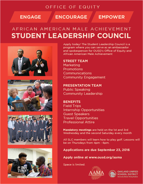 Student Leadership Council Application